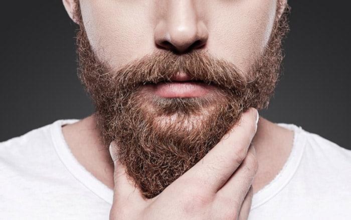 greffe de barbe prix pas cher en Tunisie