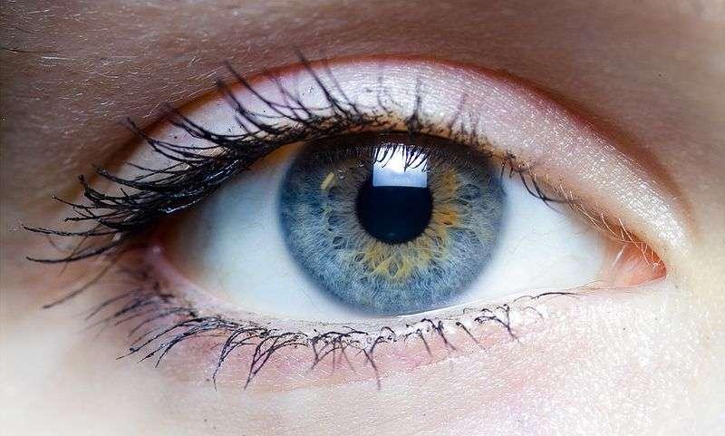 Zyoptix: Chirurgie oculaire prix pas cher en Tunisie